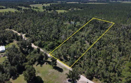 Live The Florida Lifestyle on 2.5 Acres in Greenwood! – Mobile Homes Welcome!